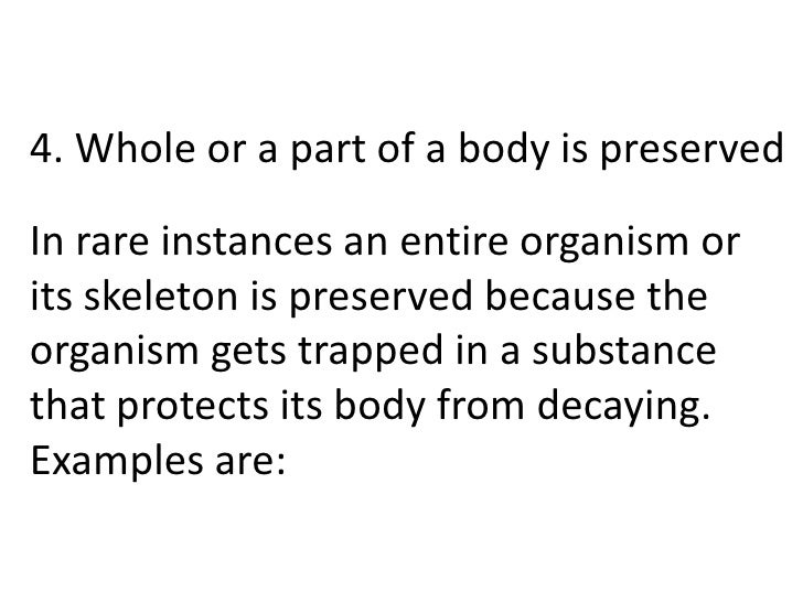 4. Whole or a part of a body is preservedIn rare instances an entire organism orits skeleton is preserved because theorgan...
