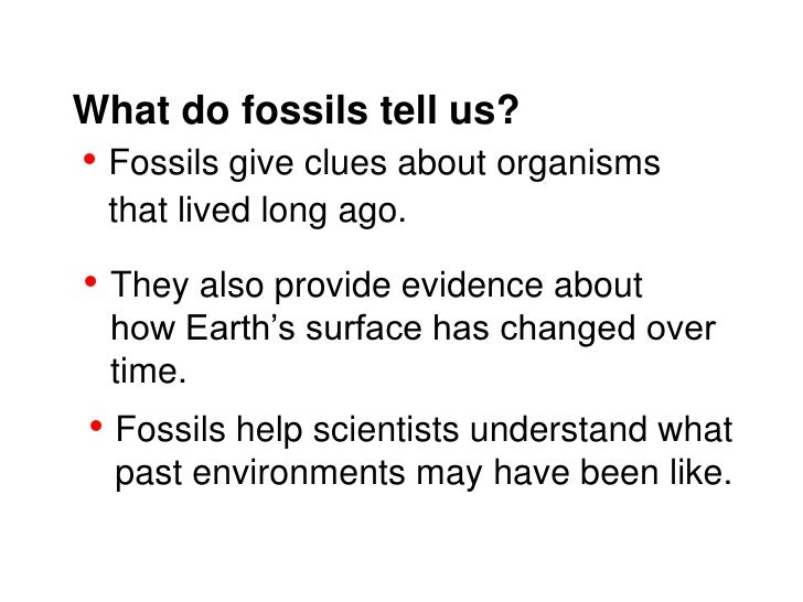 What do fossils tell us?• Fossils give clues about organisms that lived long ago.• They also provide evidence about  how E...