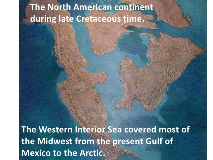 The North American continent  during late Cretaceous time.The Western Interior Sea covered most ofthe Midwest from the pre...