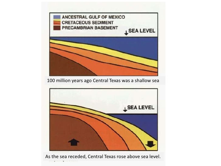 100 million years ago Central Texas was a shallow seaAs the sea receded, Central Texas rose above sea level.