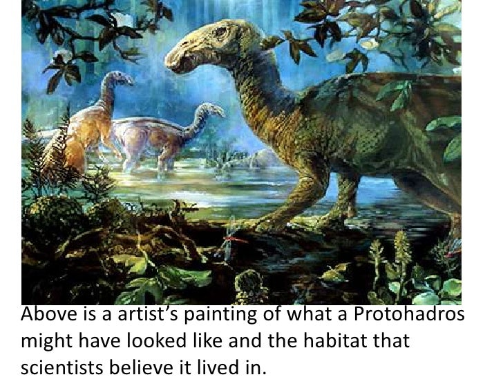 Above is a artist's painting of what a Protohadrosmight have looked like and the habitat thatscientists believe it lived in.