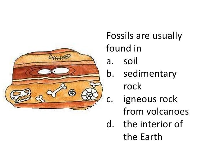 Fossils are usuallyfound ina. soilb. sedimentary    rockc. igneous rock    from volcanoesd. the interior of    the Earth