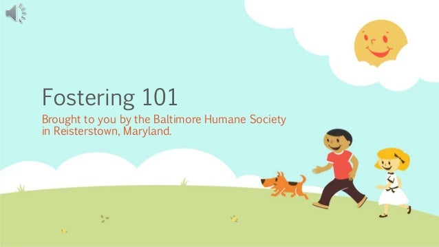 Fostering 101 Brought to you by the Baltimore Humane Society in Reisterstown, Maryland.