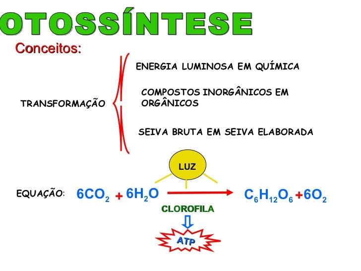 TRANSFORMAÇÃO ENERGIA LUMINOSA EM QUÍMICA COMPOSTOS   INORGÂNICOS   EM   ORGÂNICOS SEIVA BRUTA EM SEIVA ELABORADA FOTOSSÍN...