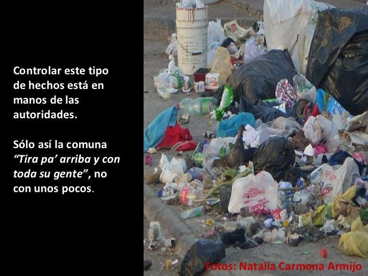 """Fotos: Natalia Carmona Armijo  Controlar este tipo de hechos está en manos de las autoridades.  Sólo así la comuna  """"Tira ..."""