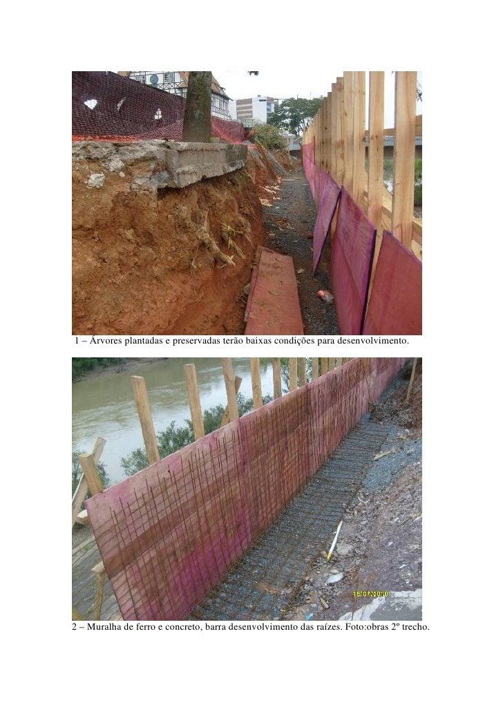 1 – Árvores plantadas e preservadas terão baixas condições para desenvolvimento.     2 – Muralha de ferro e concreto, barr...