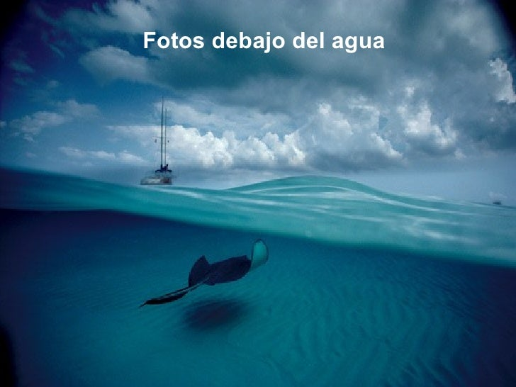 Fotos bajo el agua Imagenes de hoteles bajo el agua
