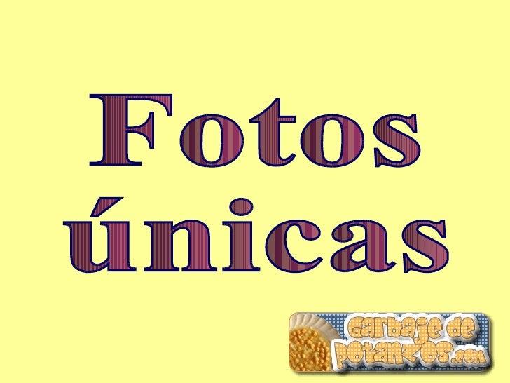 Fotos únicas