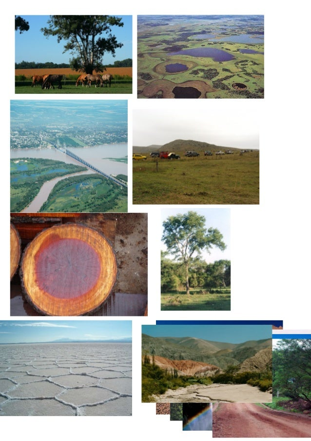 Fotos ambientes de argentina cuadro 3ros for Ambientes de argentina