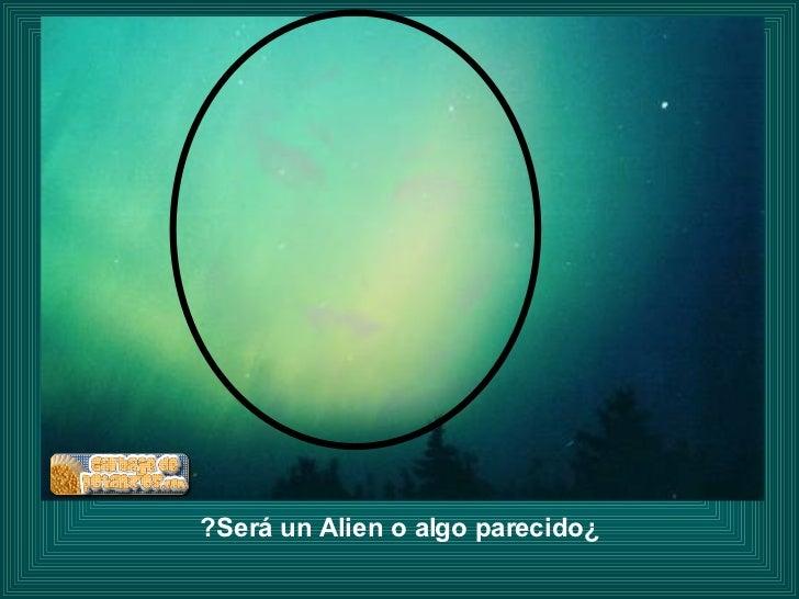 ¿Será un Alien o algo parecido?