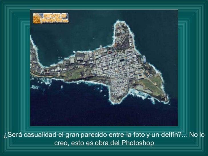 ¿Será casualidad el gran parecido entre la foto y un delfín?... No lo creo, esto es obra del Photoshop
