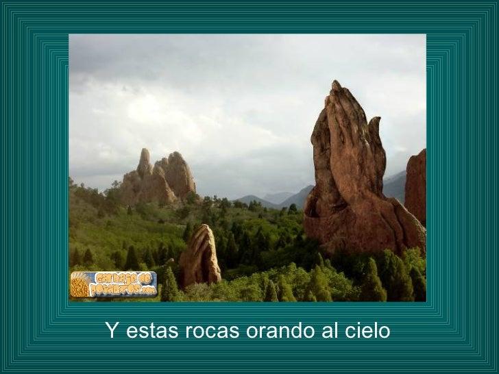 <ul><li>Y estas rocas orando al cielo </li></ul>