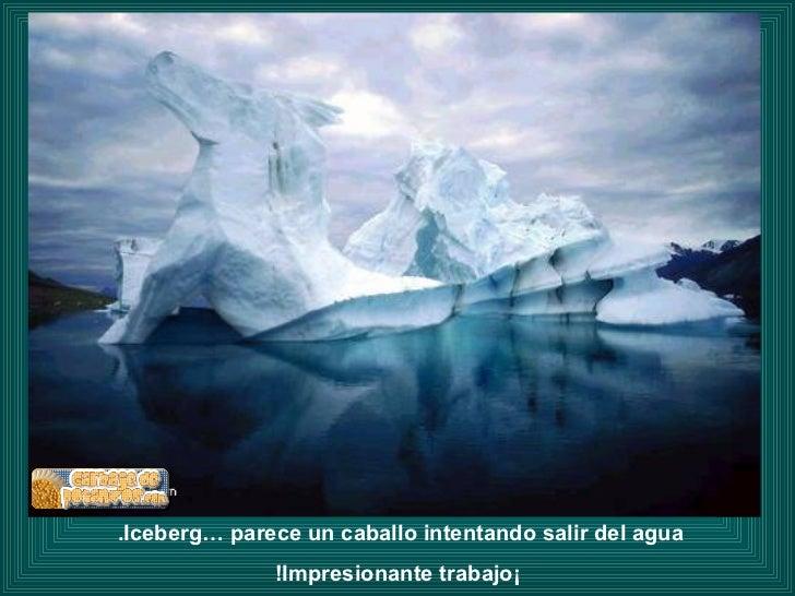 Iceberg… parece un caballo intentando salir del agua.  ¡Impresionante trabajo!
