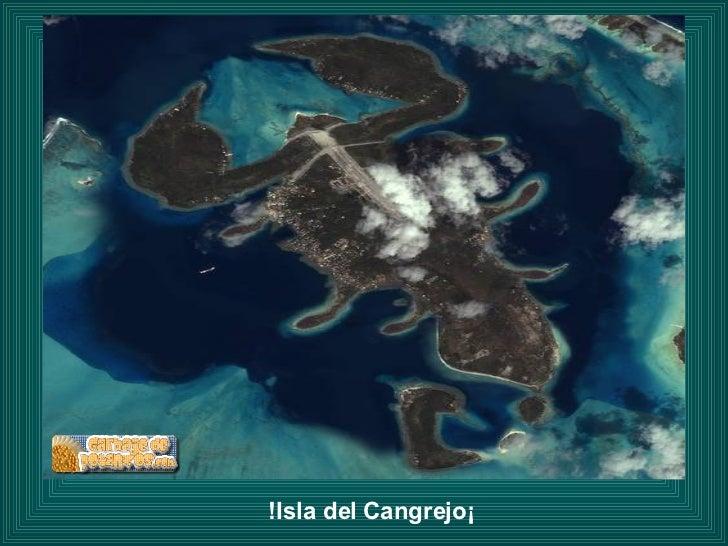 ¡Isla del Cangrejo!