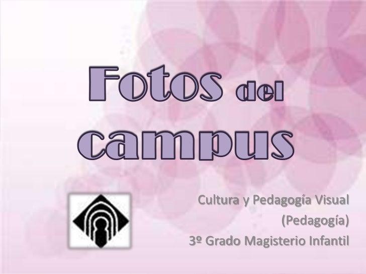 Cultura y Pedagogía Visual               (Pedagogía)3º Grado Magisterio Infantil
