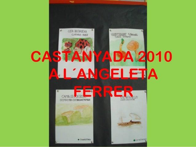 CASTANYADA 2010 A L´ANGELETA FERRER