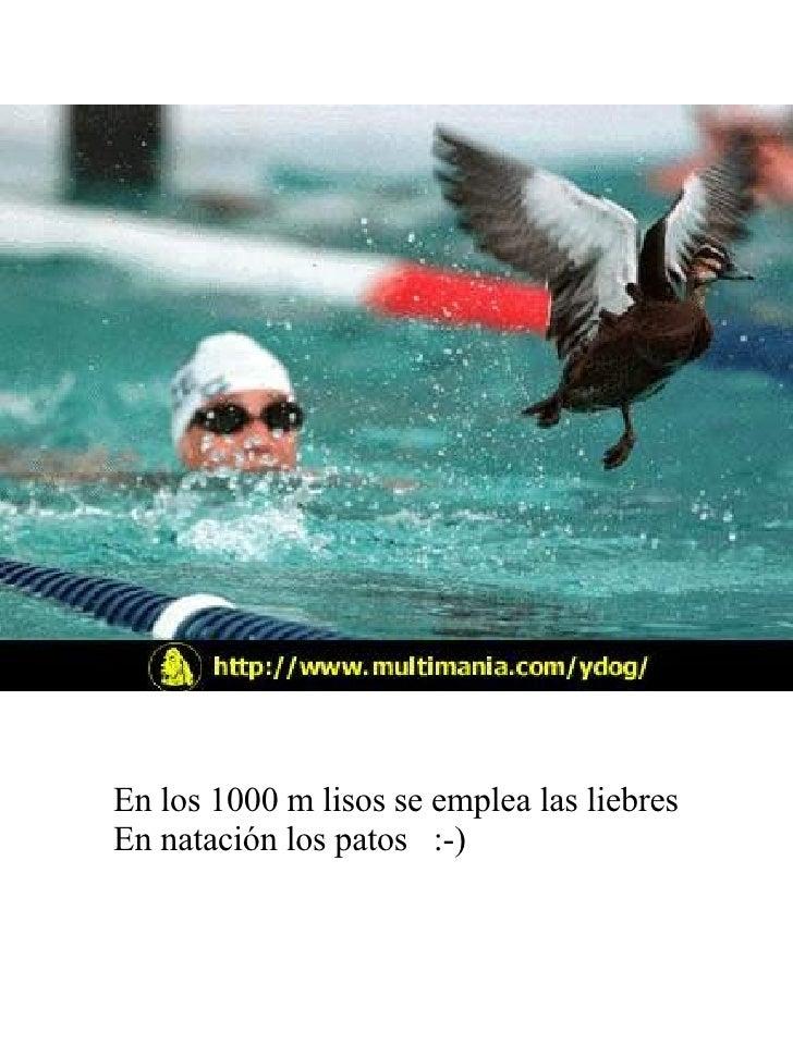 En los 1000 m lisos se emplea las liebres En natación los patos  :-)