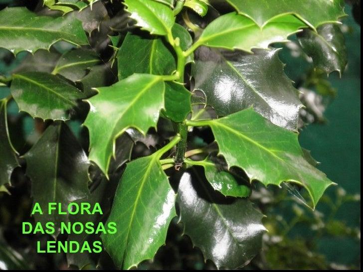 A FLORADAS NOSAS LENDAS