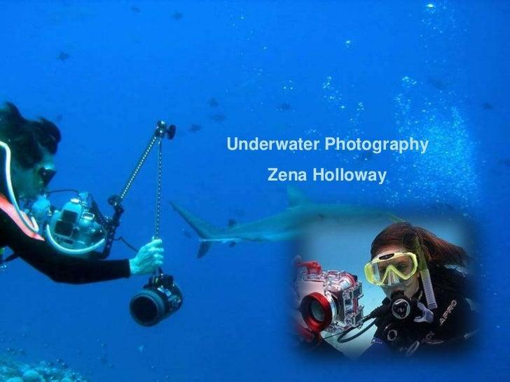 Underwater Photography    Zena Holloway