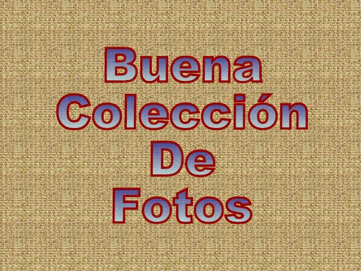 Buena Colección De  Fotos