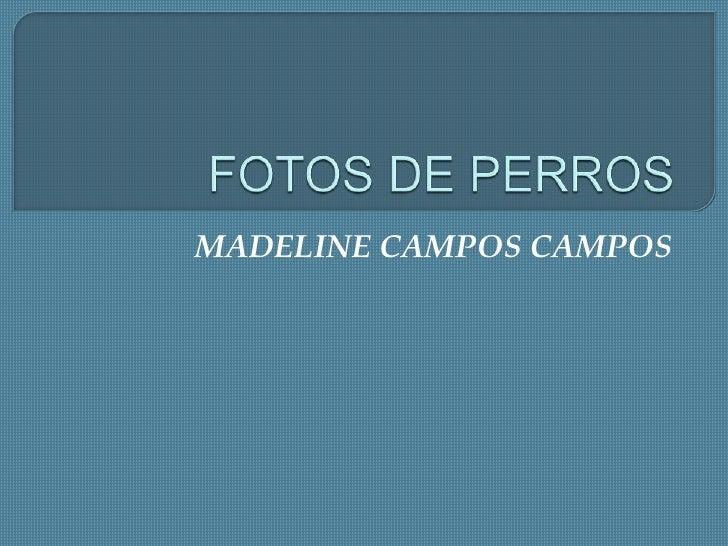 MADELINE CAMPOS CAMPOS