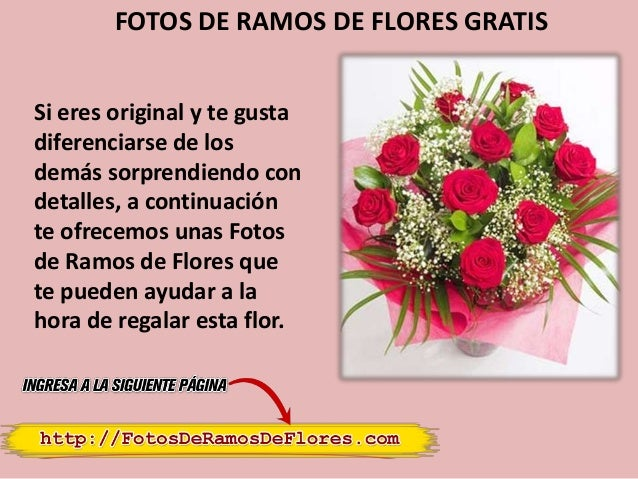 fotos-de-ramos-de-flores-gratis-2-638.jpg?cb=1387015674