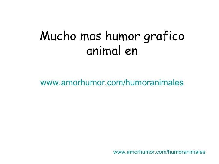 Mucho mas humor grafico animal en www.amorhumor.com / humoranimales www.amorhumor.com / humoranimales