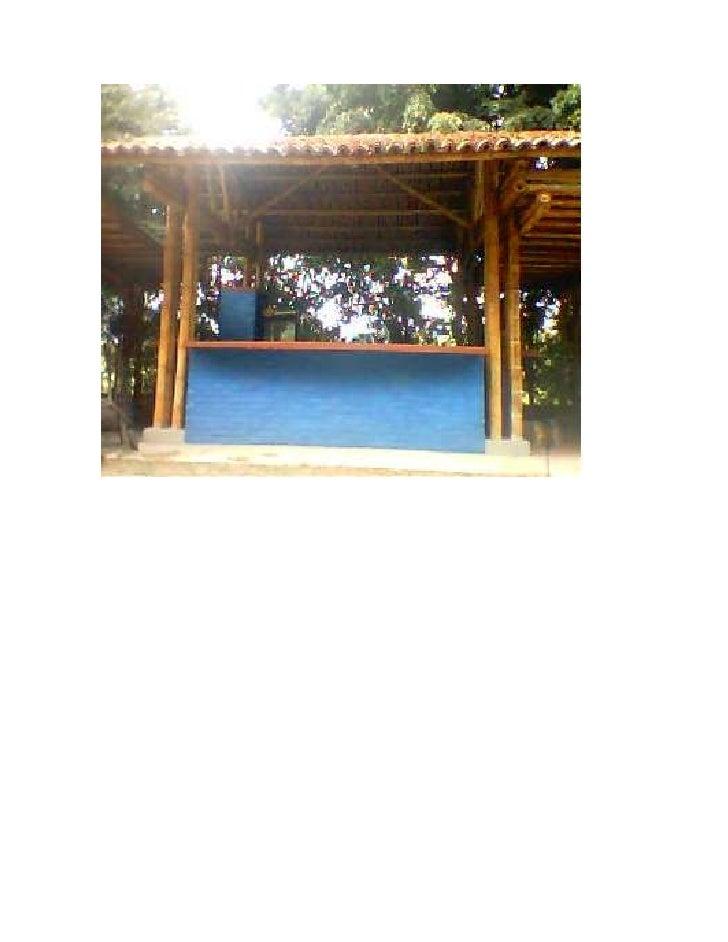 Fotos guadua 2