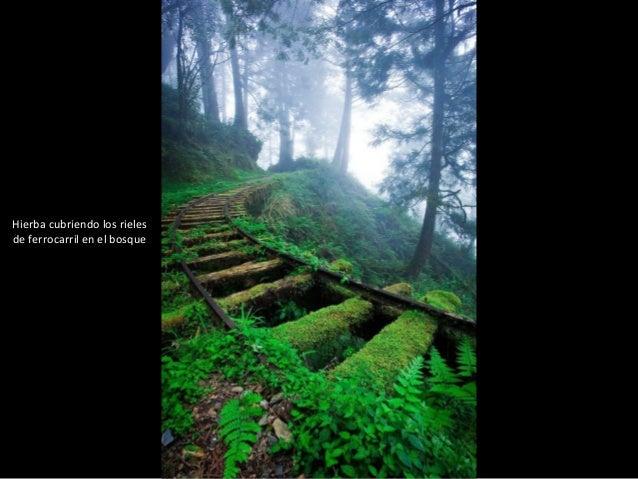 FOTOS IMPACTANTES DEL 2012 Slide 2