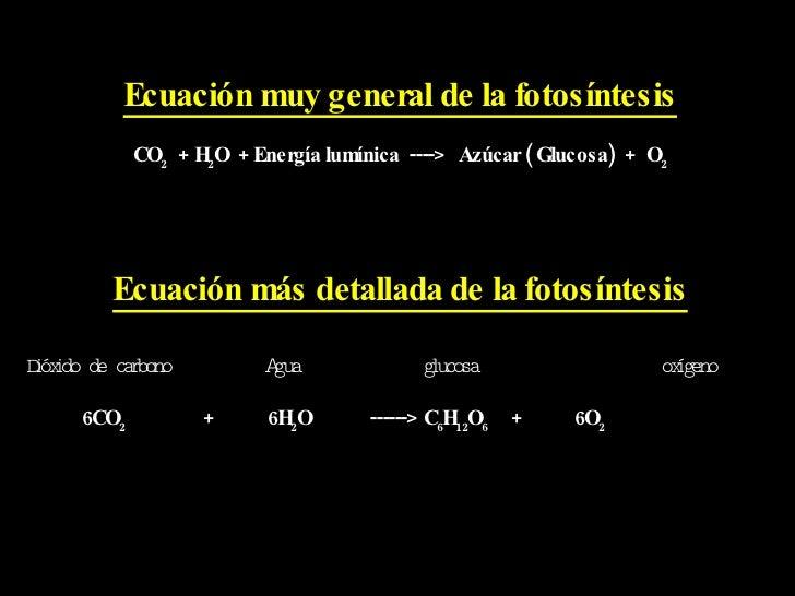 Fotosintesis y su ecuacion 38