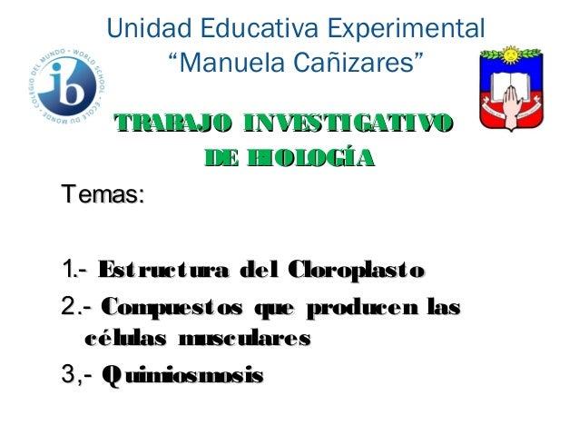 """Unidad Educativa Experimental """"Manuela Cañizares"""" TRABAJO INVESTIGATIVOTRABAJO INVESTIGATIVO DE BIOLOGÍADE BIOLOGÍA Temas:..."""