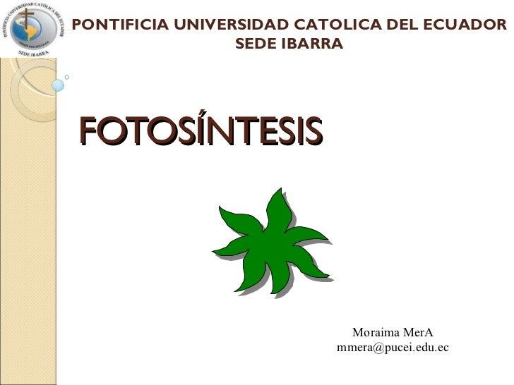 FOTOSÍNTESIS Moraima MerA [email_address] PONTIFICIA UNIVERSIDAD CATOLICA DEL ECUADOR SEDE IBARRA