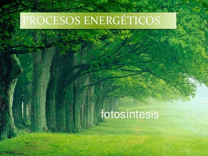 PROCESOS ENERGÉTICOS           fotosíntesis