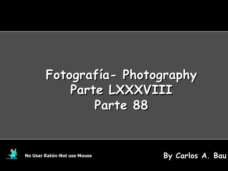 Fotografía- Photography Parte LXXXVIII Parte 88 No Usar Ratón-Not use Mouse By Carlos A. Bau
