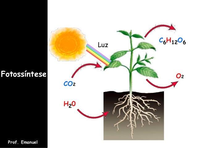 Fotossíntese Prof. Emanuel CO2 H20 O2 C6H12O6 Luz