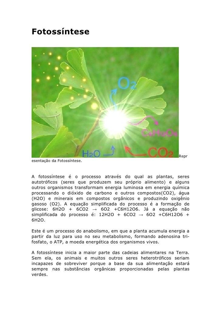 Fotossíntese                                                                     Repr esentação da Fotossíntese.    A foto...