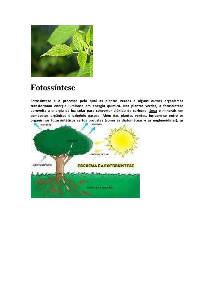 FotossínteseFotossíntese é o processo pelo qual as plantas verdes e alguns outros organismostransformam energia luminosa e...
