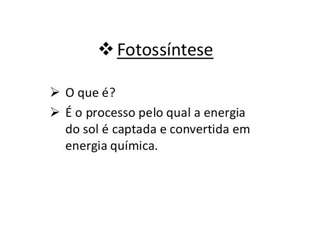 Fotossíntese  O que é?  É o processo pelo qual a energia do sol é captada e convertida em energia química.