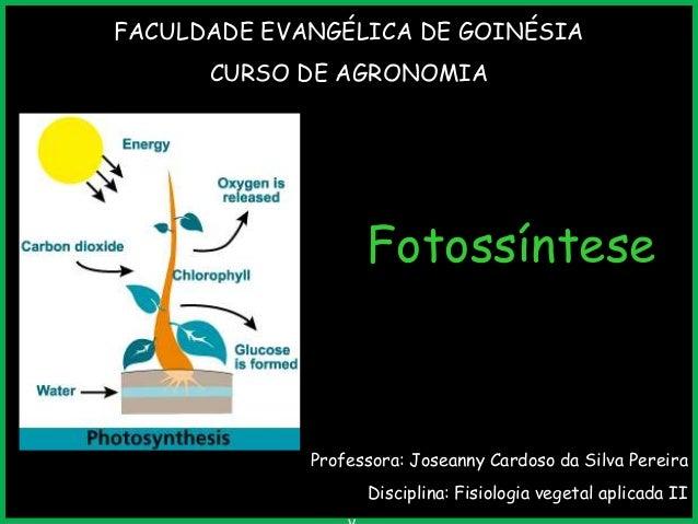 FACULDADE EVANGÉLICA DE GOINÉSIA CURSO DE AGRONOMIA  Fotossíntese  Professora: Joseanny Cardoso da Silva Pereira  Discipli...