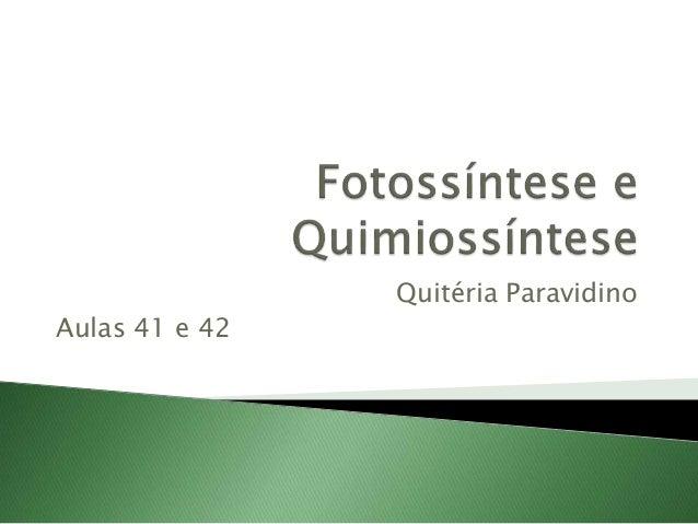 Quitéria Paravidino Aulas 41 e 42