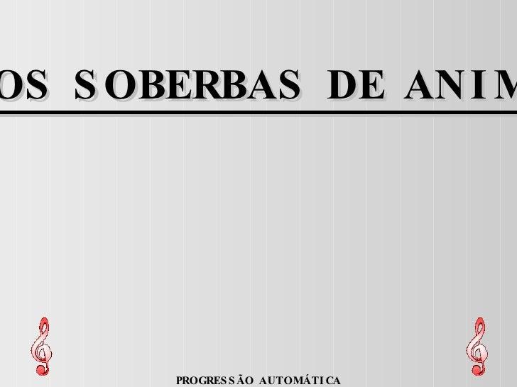 FOTOS SOBERBAS DE ANIMAIS PROGRESSÃO AUTOMÁTICA