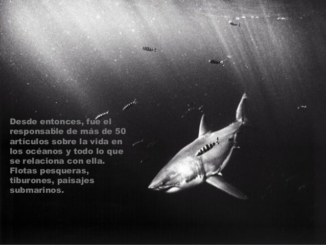Doubilet recibió su primer premio en la Underwater Sara Prize, atribuído por la revista italiana Mundo Sumergido y mencion...