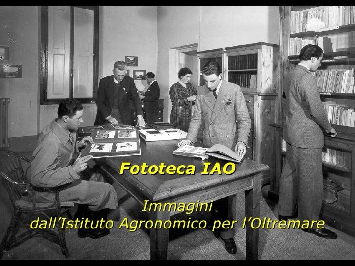 Fototeca IAO Immagini dall'Istituto Agronomico per l'Oltremare