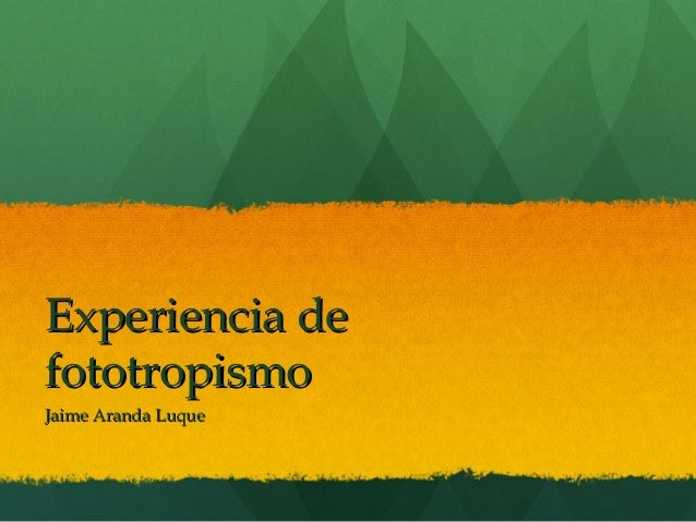 Experiencia defototropismoJaime Aranda Luque