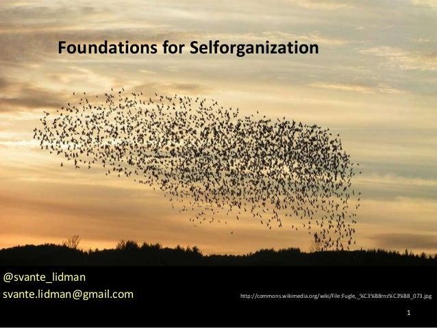 Foundations for Selforganization        Foundations for Selforganization@svante_lidmansvante.lidman@gmail.com   http://com...