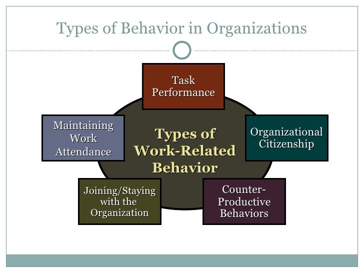 human behavioral organization report