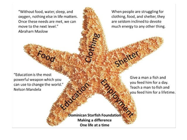 starfish and spider essay It's easy to mistake starfish for spiders: the breakdown of a starfish compared to a spider is extremely clever explaining the anatomy of a starfish and how cutting one arm off only makes the starfish regenerate into two entities was brilliant.