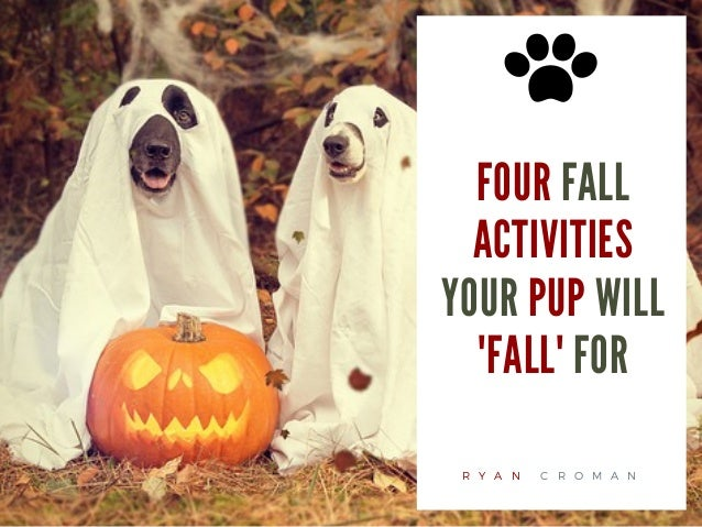 FOUR FALL ACTIVITIES YOUR PUP WILL 'FALL' FOR R Y A N C R O M A N