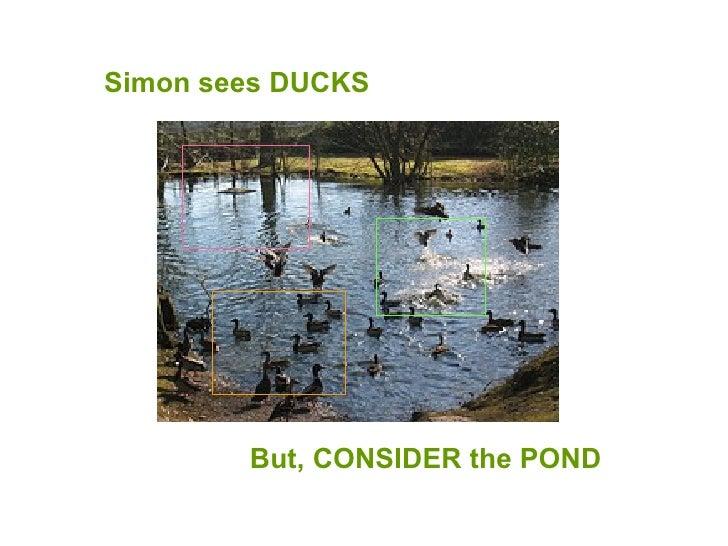 Simon sees DUCKS But, CONSIDER the POND