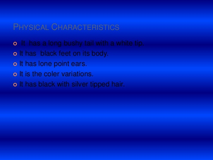 Physical Characteristics<br /> It  has a long bushy tail with a white tip.<br />It has  black feet on its body.<br />It ha...